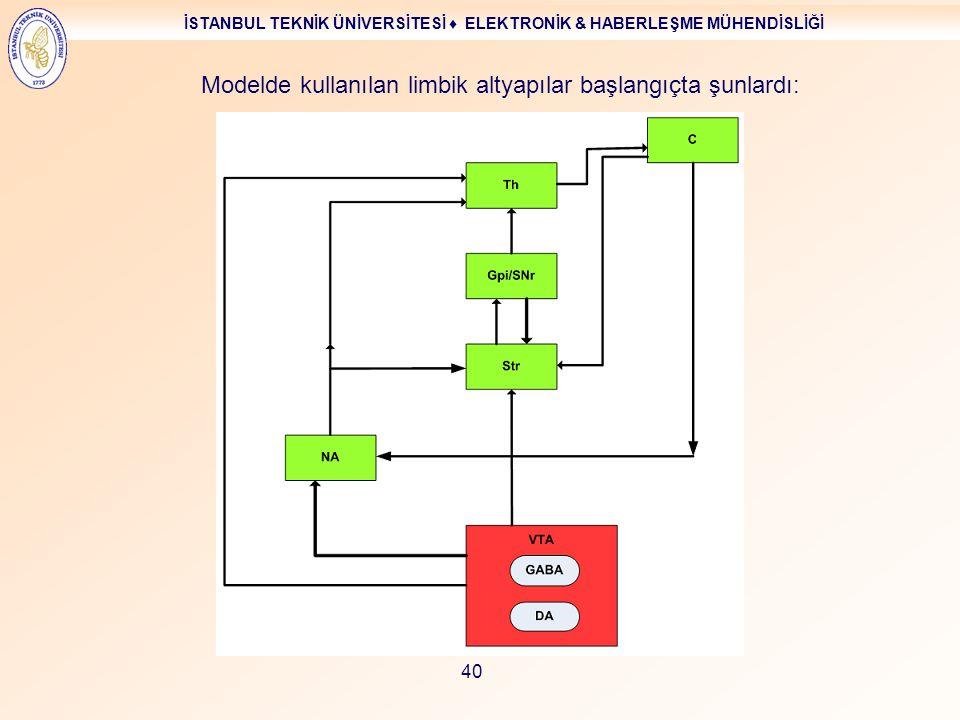 Modelde kullanılan limbik altyapılar başlangıçta şunlardı: