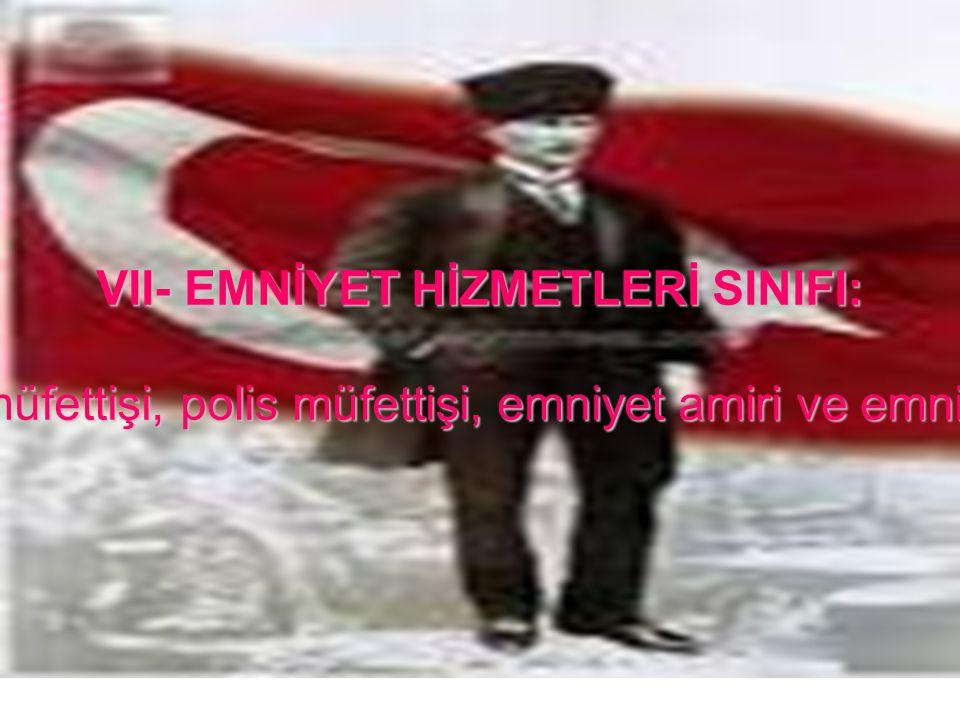 VII- EMNİYET HİZMETLERİ SINIFI: