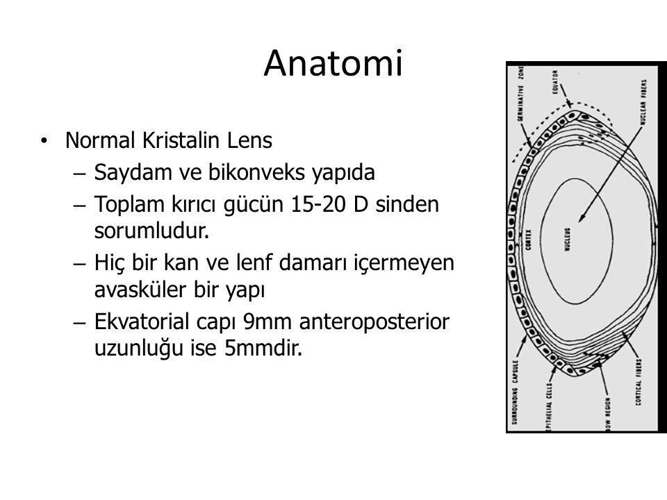 Anatomi Normal Kristalin Lens Saydam ve bikonveks yapıda