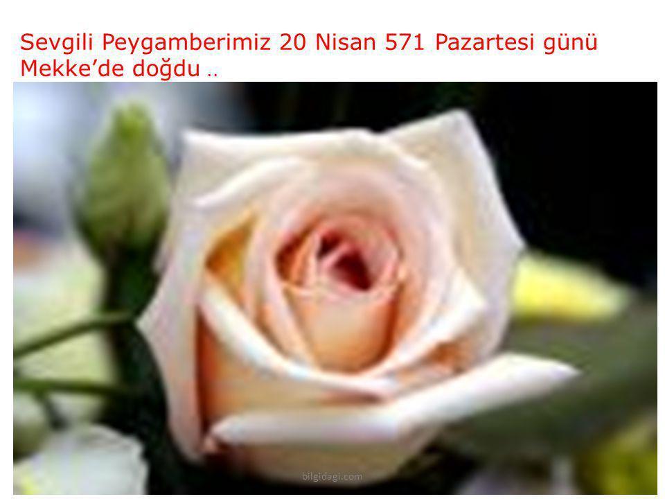 Sevgili Peygamberimiz 20 Nisan 571 Pazartesi günü Mekke'de doğdu ..