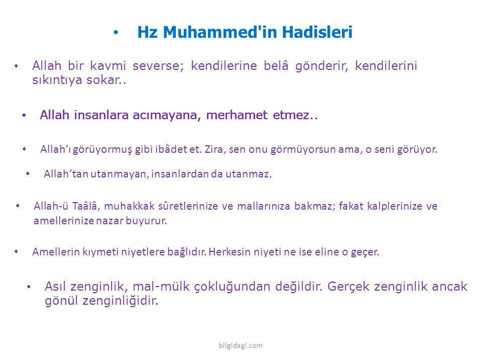 Hz Muhammed in Hadisleri