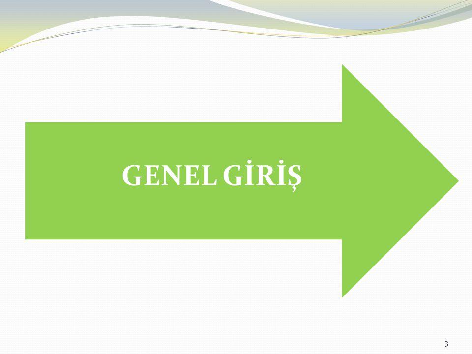 GENEL GİRİŞ
