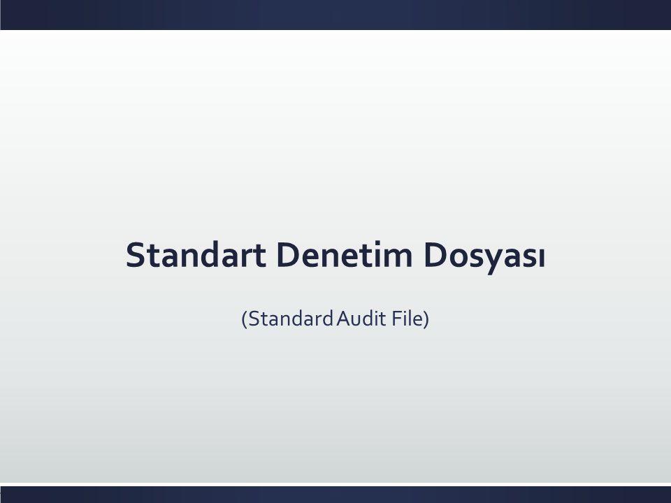 Standart Denetim Dosyası