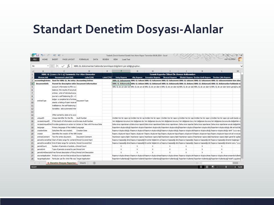 Standart Denetim Dosyası-Alanlar