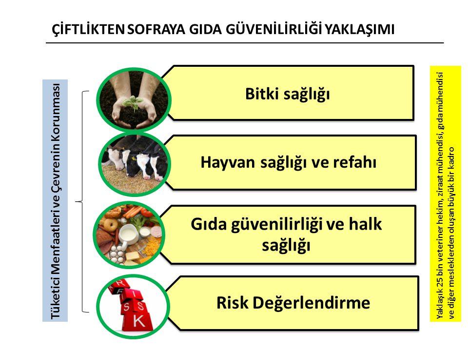 Hayvan sağlığı ve refahı Gıda güvenilirliği ve halk sağlığı