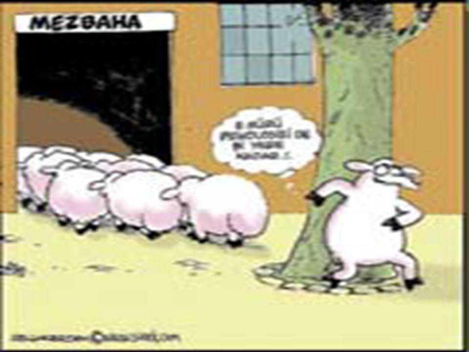 PSİKOLOJİ www.cemalsahin.comwww.cemalsahin.com