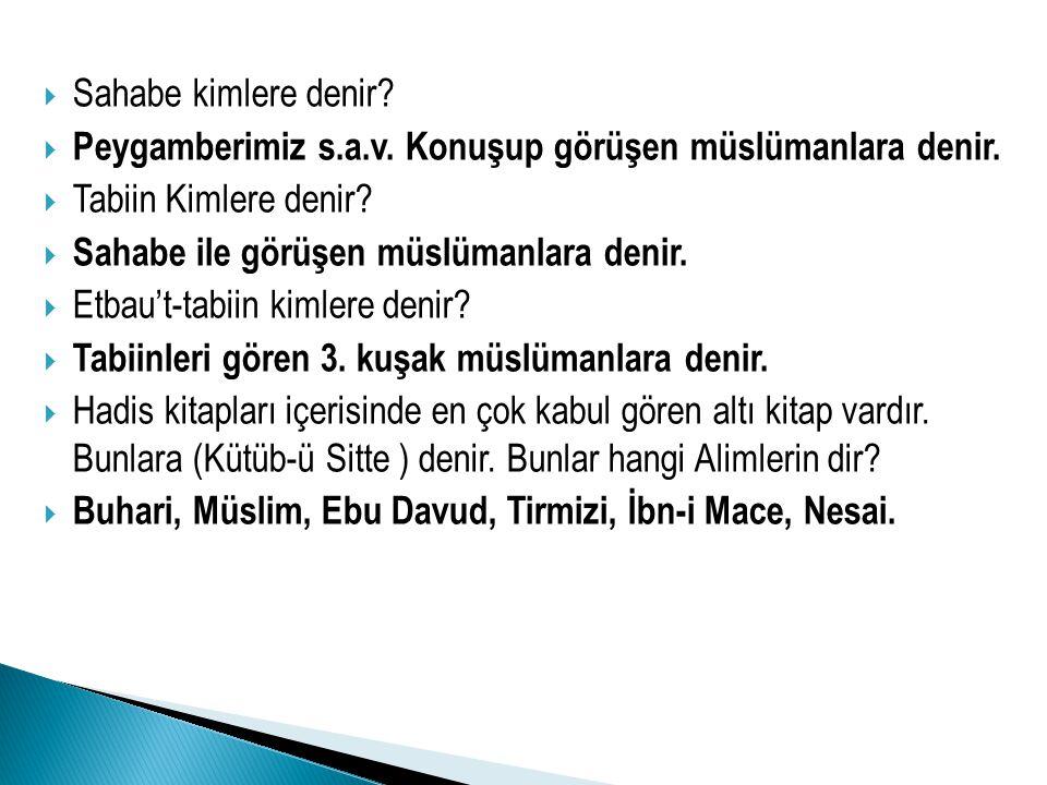 Sahabe kimlere denir Peygamberimiz s.a.v. Konuşup görüşen müslümanlara denir. Tabiin Kimlere denir