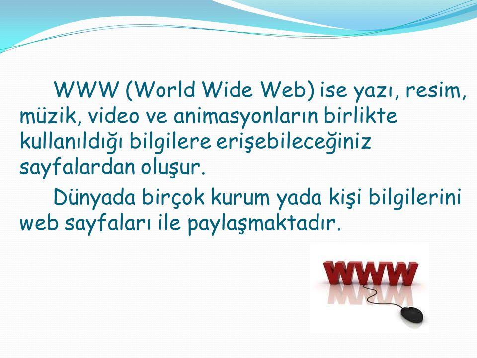 WWW (World Wide Web) ise yazı, resim, müzik, video ve animasyonların birlikte kullanıldığı bilgilere erişebileceğiniz sayfalardan oluşur.
