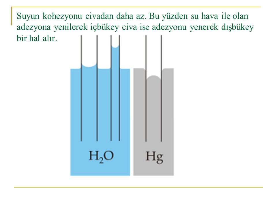 Suyun kohezyonu civadan daha az