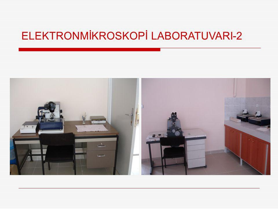 ELEKTRONMİKROSKOPİ LABORATUVARI-2