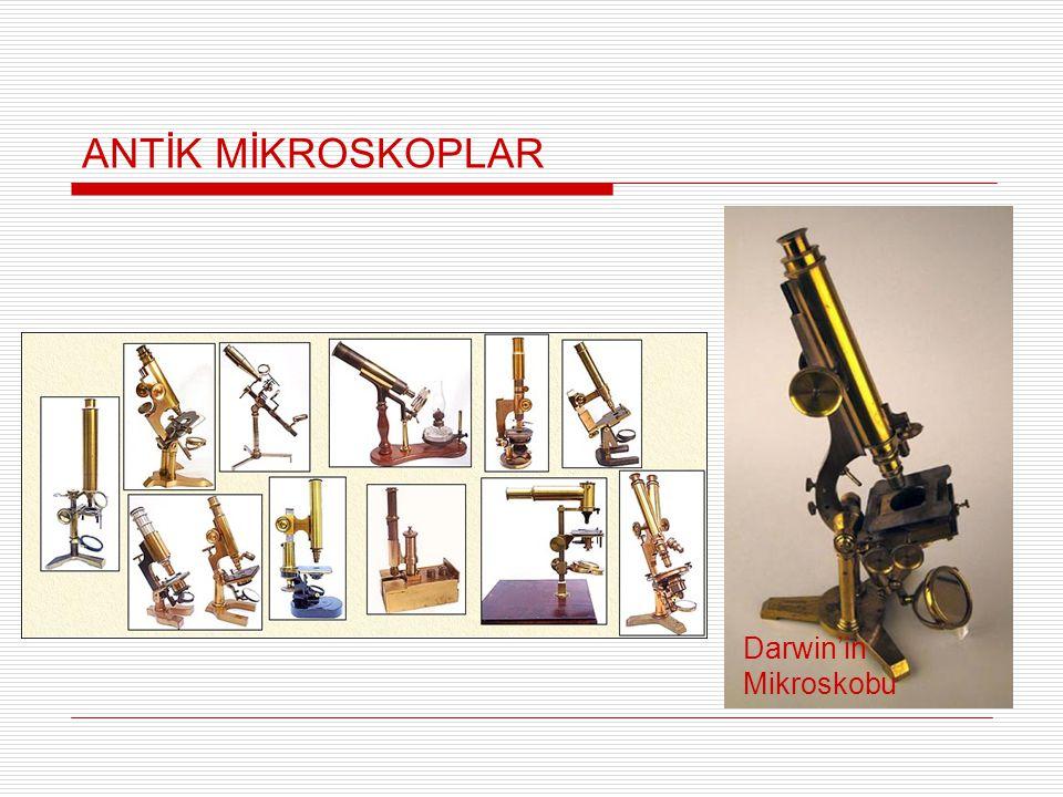 ANTİK MİKROSKOPLAR Darwin'in Mikroskobu