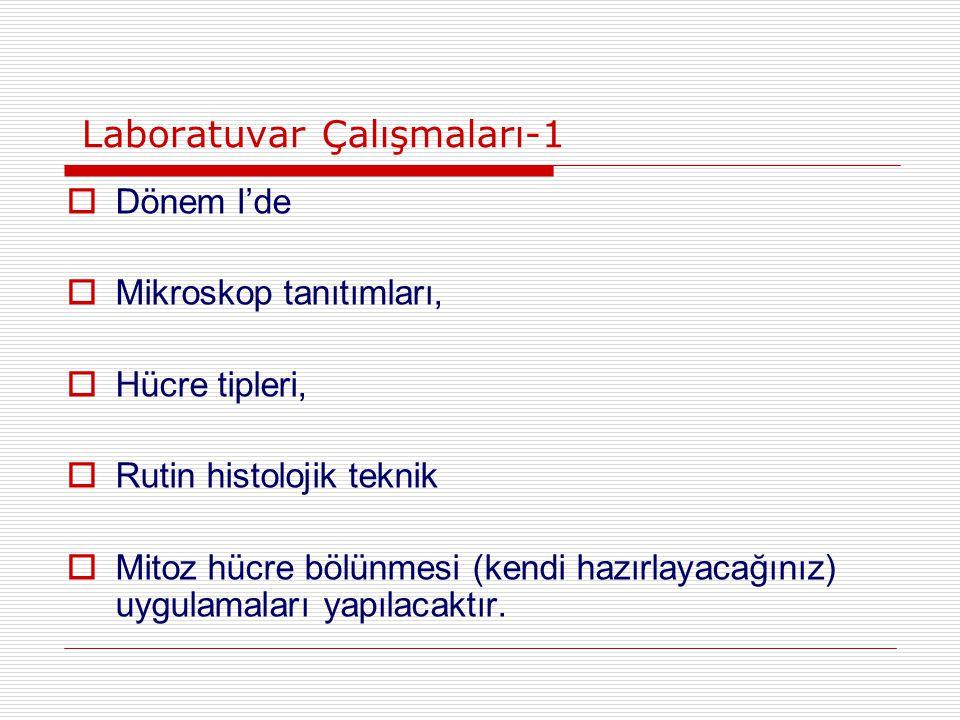 Laboratuvar Çalışmaları-1
