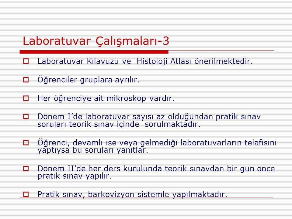 Laboratuvar Çalışmaları-3