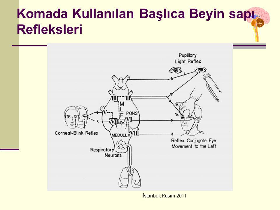 Komada Kullanılan Başlıca Beyin sapı Refleksleri