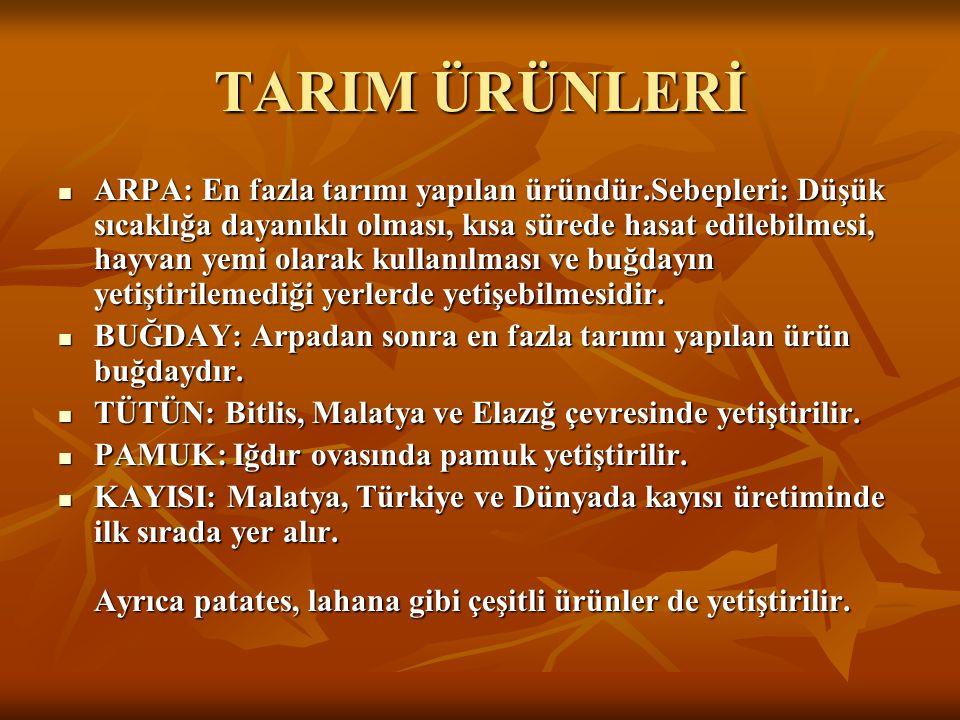TARIM ÜRÜNLERİ