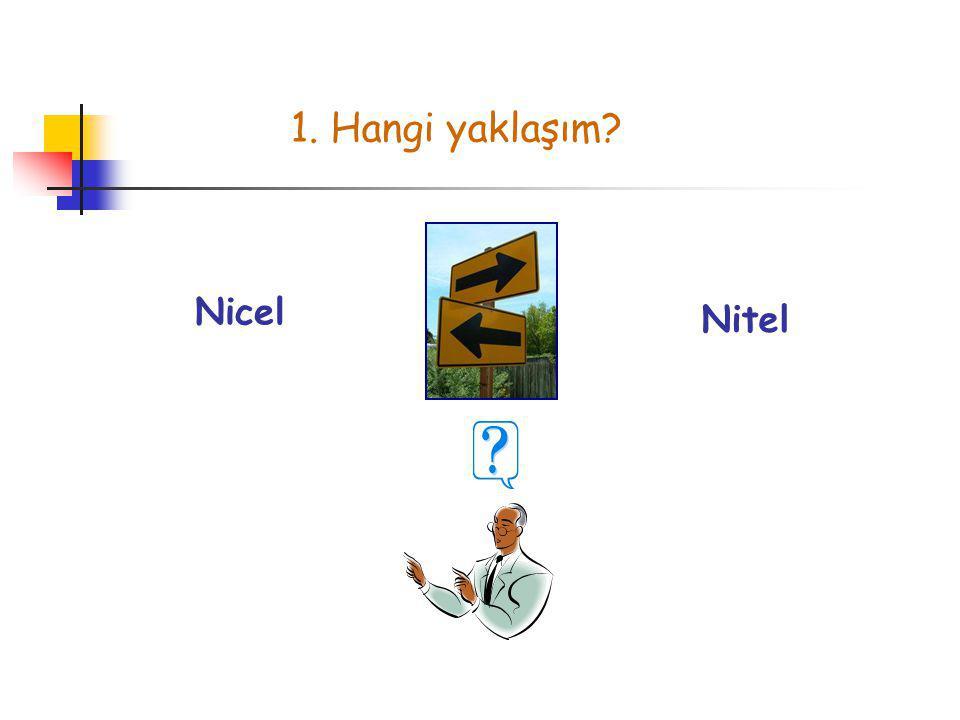 1. Hangi yaklaşım Nicel Nitel