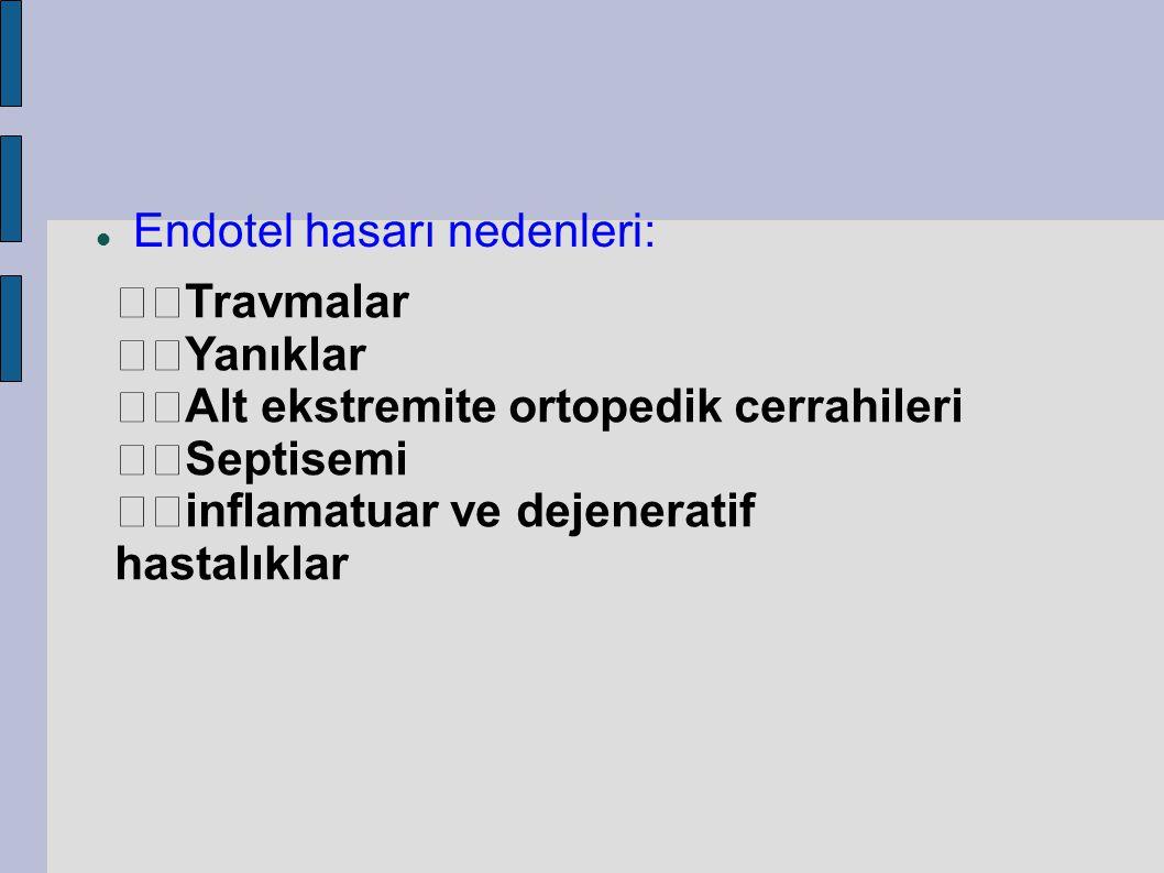 Endotel hasarı nedenleri: