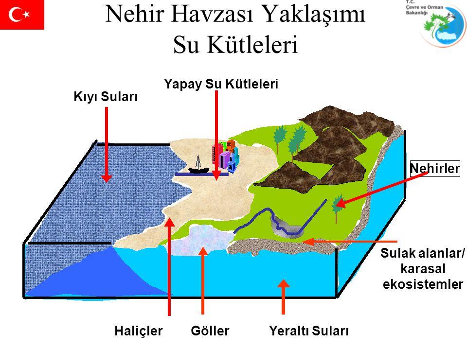 Nehir Havzası Yaklaşımı Su Kütleleri