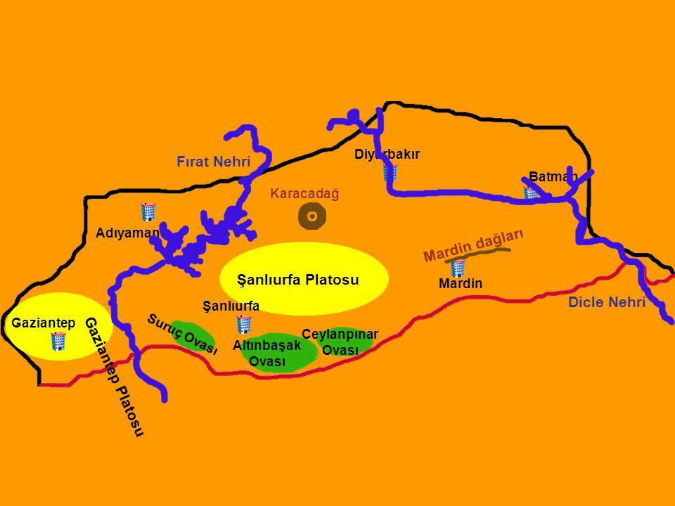 Fırat Nehri Şanlıurfa Platosu Dicle Nehri Gaziantep Platosu