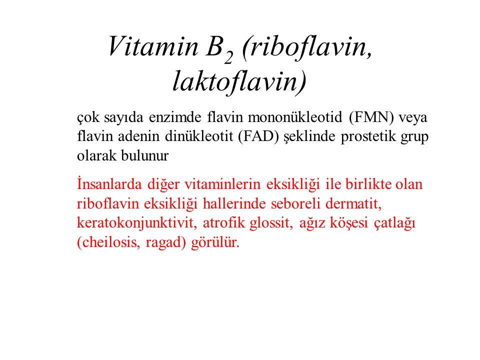 Vitamin B2 (riboflavin, laktoflavin)