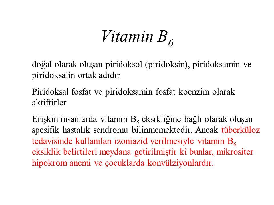 Vitamin B6 doğal olarak oluşan piridoksol (piridoksin), piridoksamin ve piridoksalin ortak adıdır.