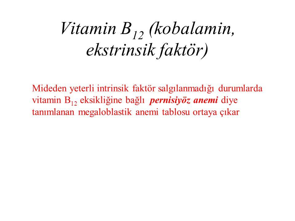 Vitamin B12 (kobalamin, ekstrinsik faktör)