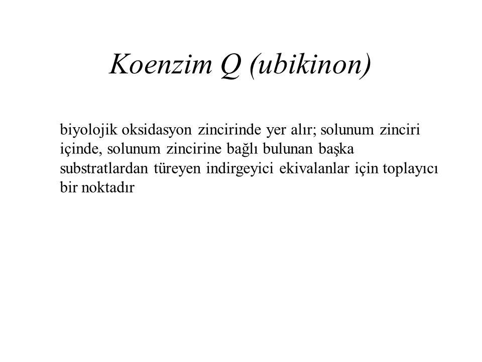 Koenzim Q (ubikinon)