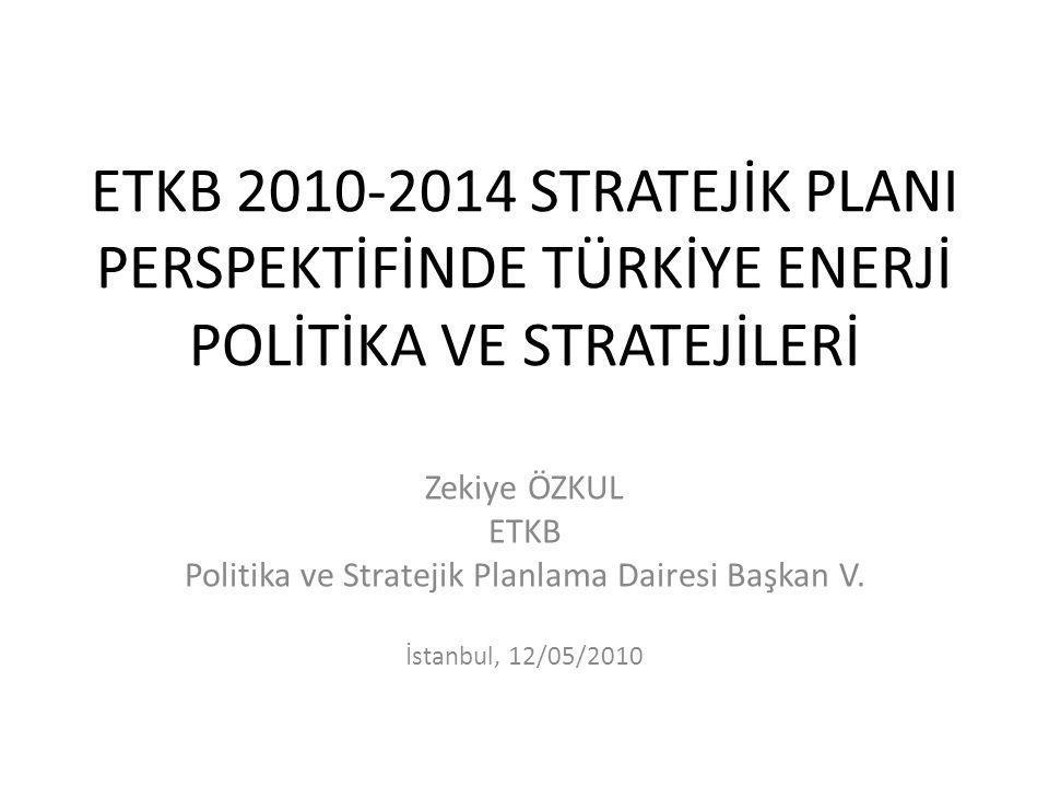 Politika ve Stratejik Planlama Dairesi Başkan V.