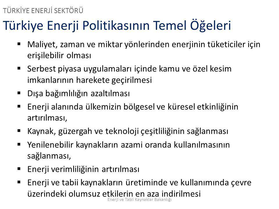 Türkiye Enerji Politikasının Temel Öğeleri