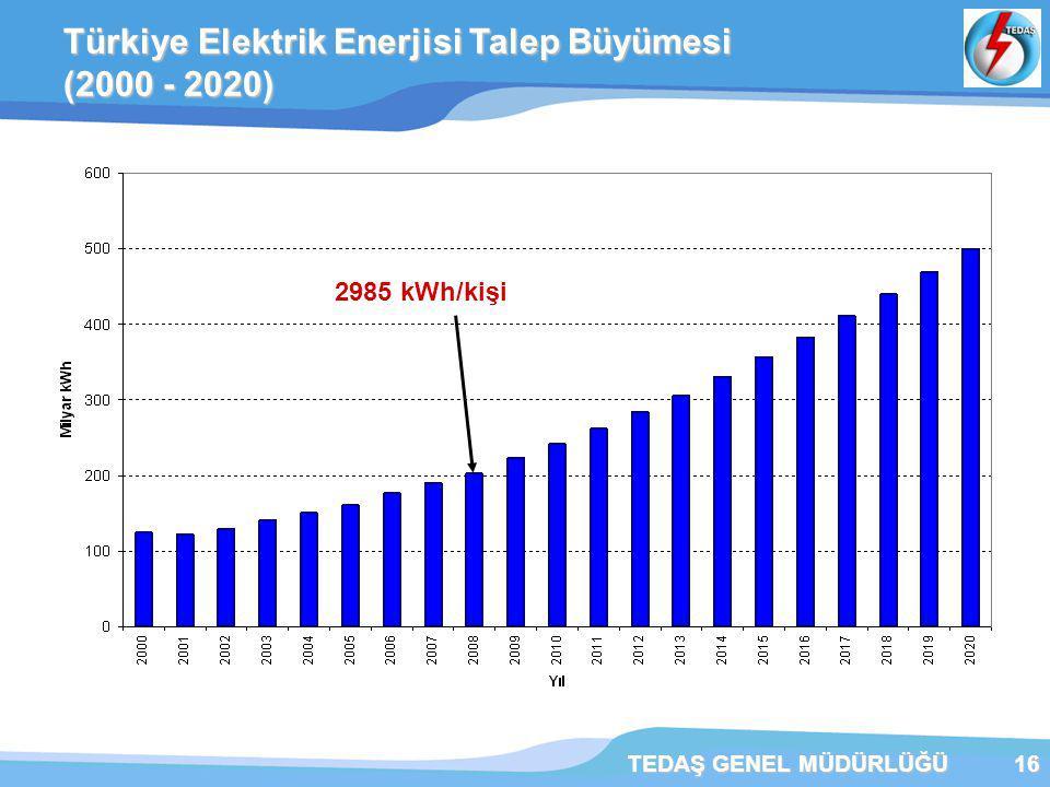 Türkiye Elektrik Enerjisi Talep Büyümesi (2000 - 2020)