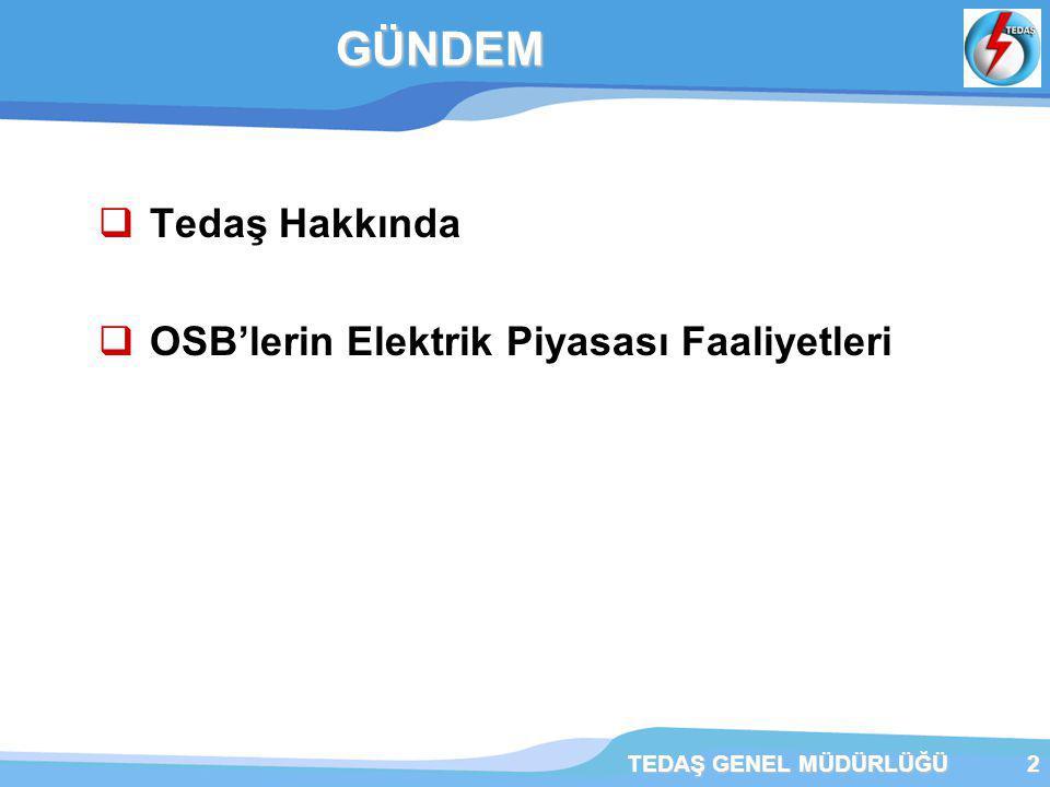 GÜNDEM Tedaş Hakkında OSB'lerin Elektrik Piyasası Faaliyetleri