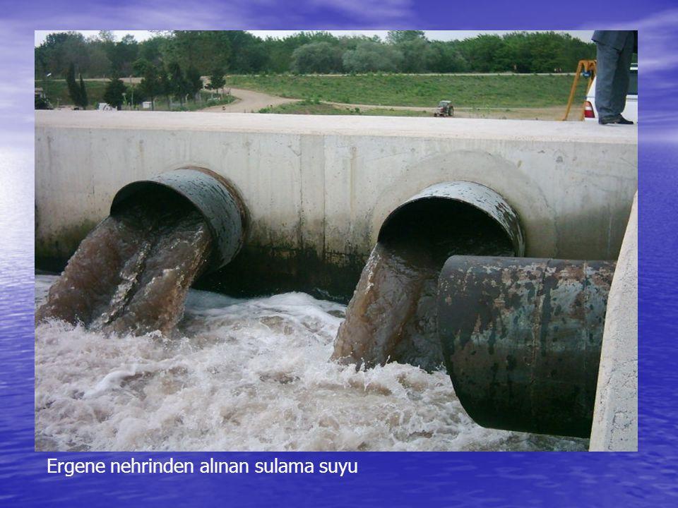 Ergene nehrinden alınan sulama suyu