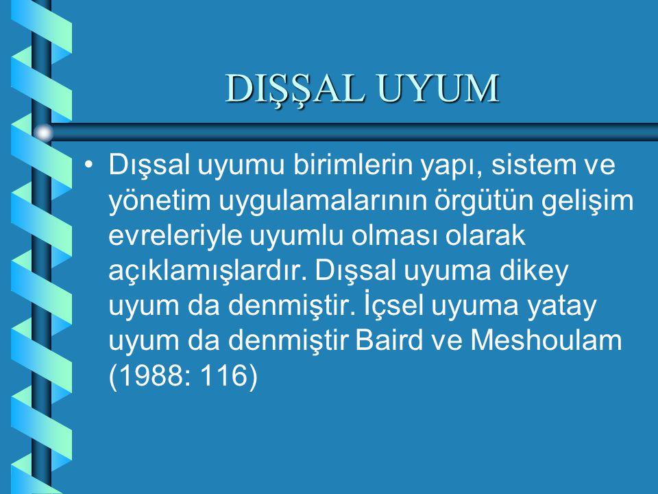 DIŞŞAL UYUM
