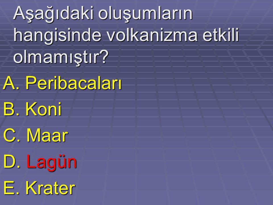 Aşağıdaki oluşumların hangisinde volkanizma etkili olmamıştır