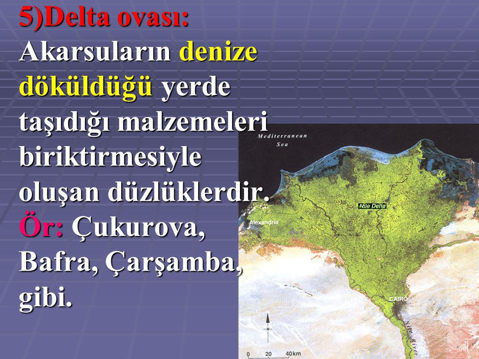 5)Delta ovası: Akarsuların denize döküldüğü yerde taşıdığı malzemeleri biriktirmesiyle oluşan düzlüklerdir.