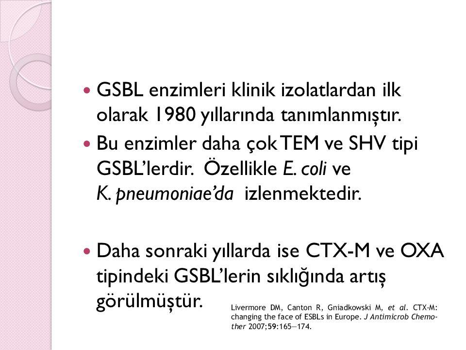 GSBL enzimleri klinik izolatlardan ilk olarak 1980 yıllarında tanımlanmıştır.