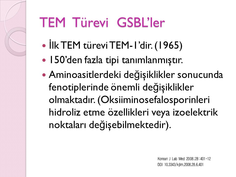 TEM Türevi GSBL'ler İlk TEM türevi TEM-1'dir. (1965)