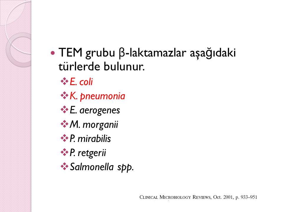TEM grubu β-laktamazlar aşağıdaki türlerde bulunur.