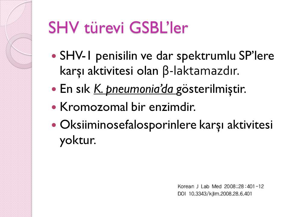 SHV türevi GSBL'ler SHV-1 penisilin ve dar spektrumlu SP'lere karşı aktivitesi olan β-laktamazdır.