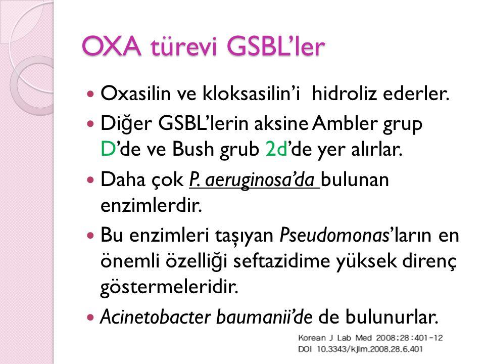 OXA türevi GSBL'ler Oxasilin ve kloksasilin'i hidroliz ederler.