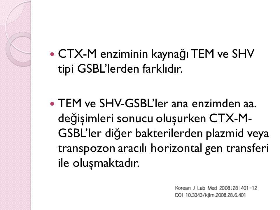 CTX-M enziminin kaynağı TEM ve SHV tipi GSBL'lerden farklıdır.