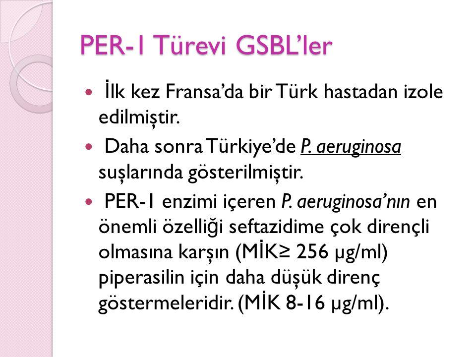 PER-1 Türevi GSBL'ler İlk kez Fransa'da bir Türk hastadan izole edilmiştir. Daha sonra Türkiye'de P. aeruginosa suşlarında gösterilmiştir.