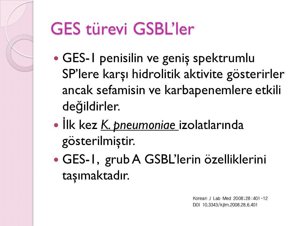 GES türevi GSBL'ler