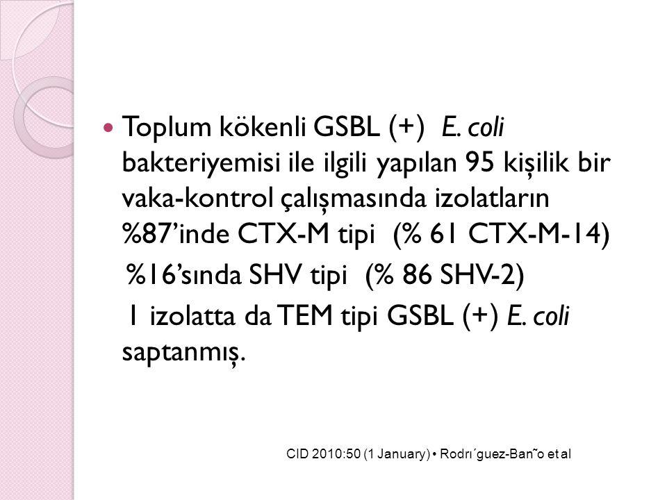%16'sında SHV tipi (% 86 SHV-2)