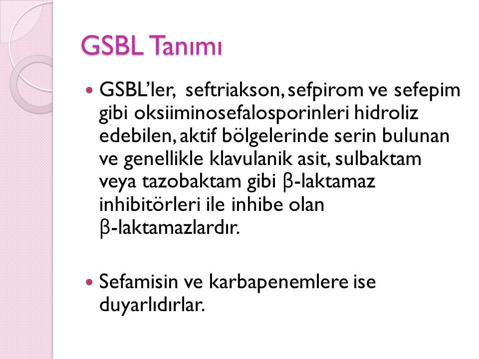 GSBL Tanımı