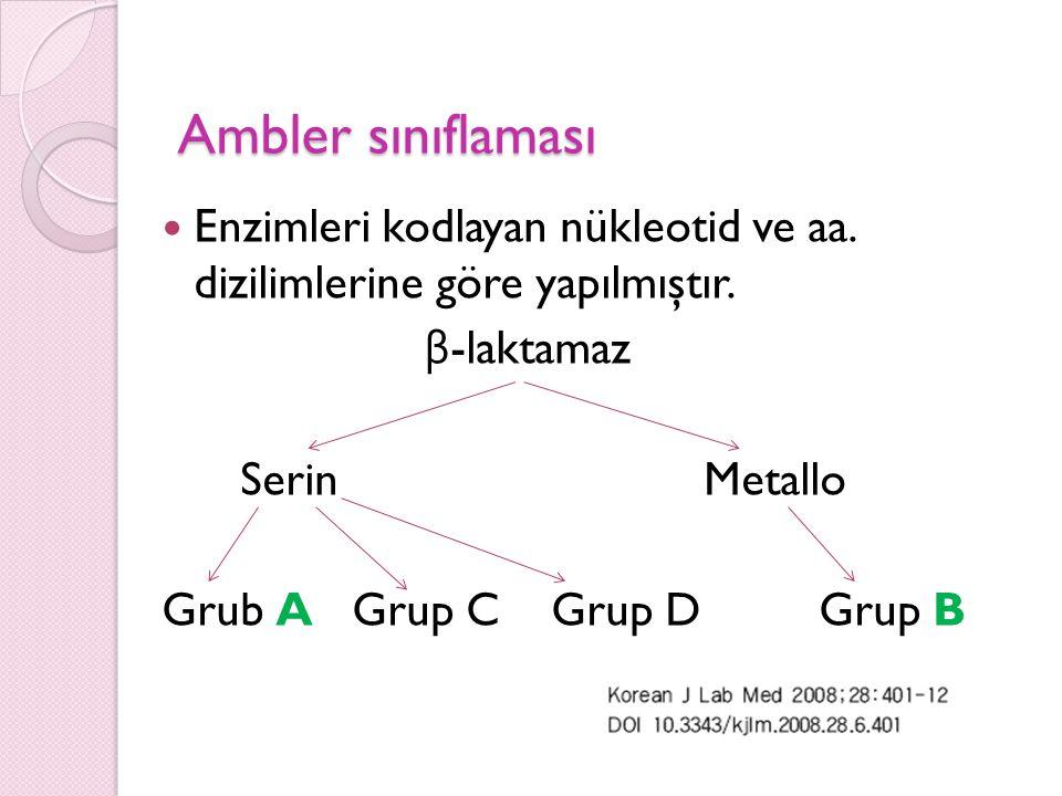 Ambler sınıflaması Enzimleri kodlayan nükleotid ve aa. dizilimlerine göre yapılmıştır. β-laktamaz.