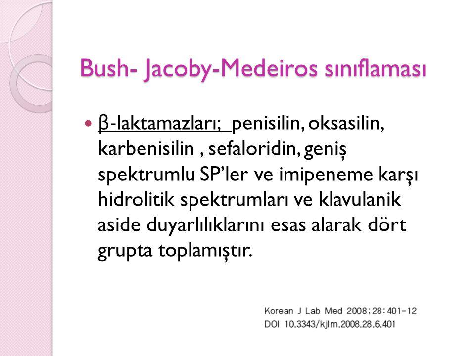 Bush- Jacoby-Medeiros sınıflaması