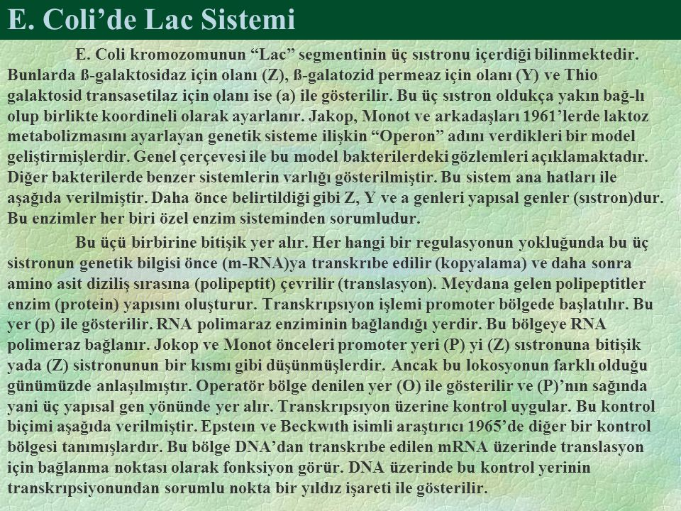 E. Coli'de Lac Sistemi