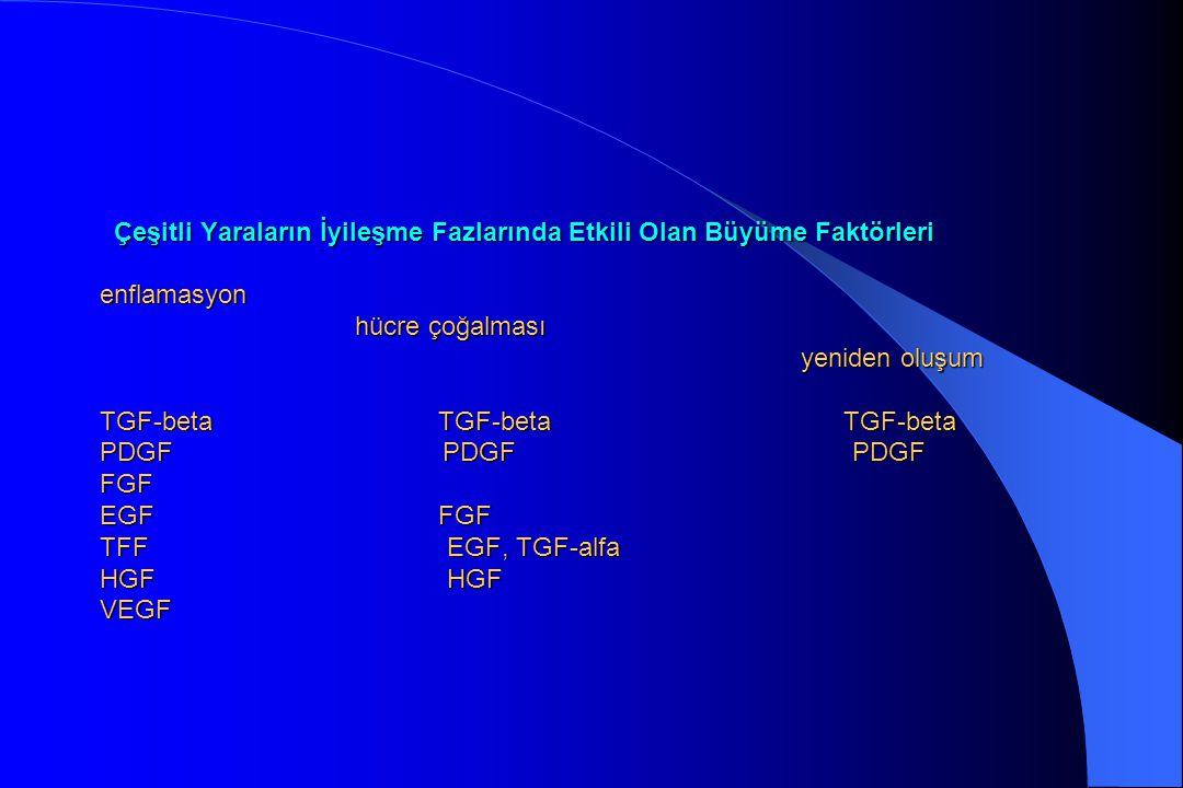 Çeşitli Yaraların İyileşme Fazlarında Etkili Olan Büyüme Faktörleri enflamasyon hücre çoğalması yeniden oluşum TGF-beta TGF-beta TGF-beta PDGF PDGF PDGF FGF EGF FGF TFF EGF, TGF-alfa HGF HGF VEGF
