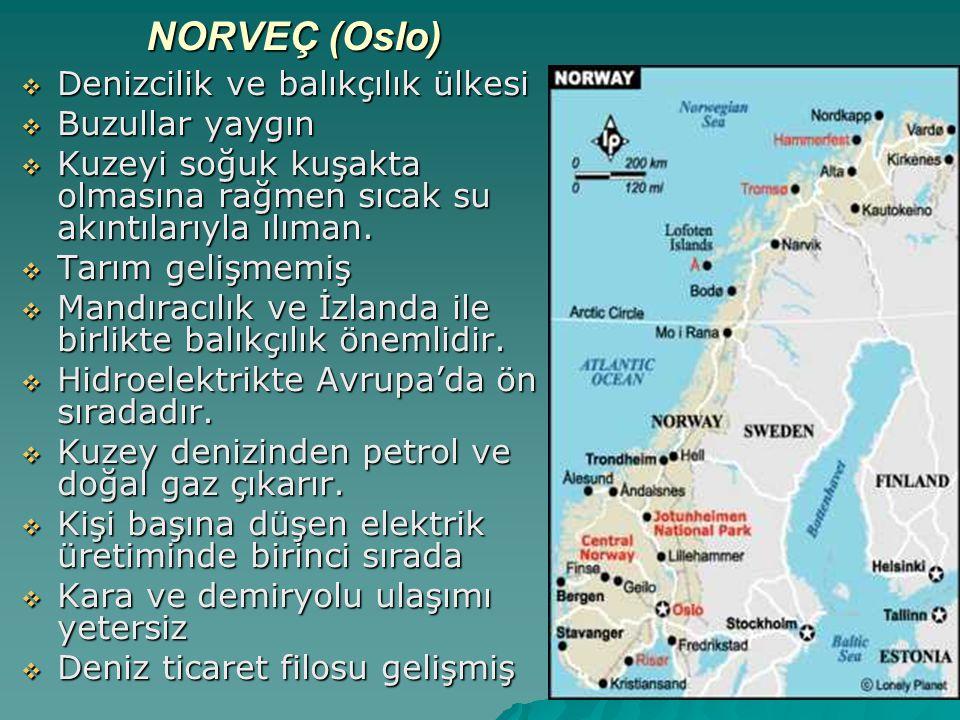 NORVEÇ (Oslo) Denizcilik ve balıkçılık ülkesi Buzullar yaygın